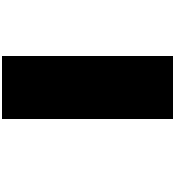 Logo Marque Naish